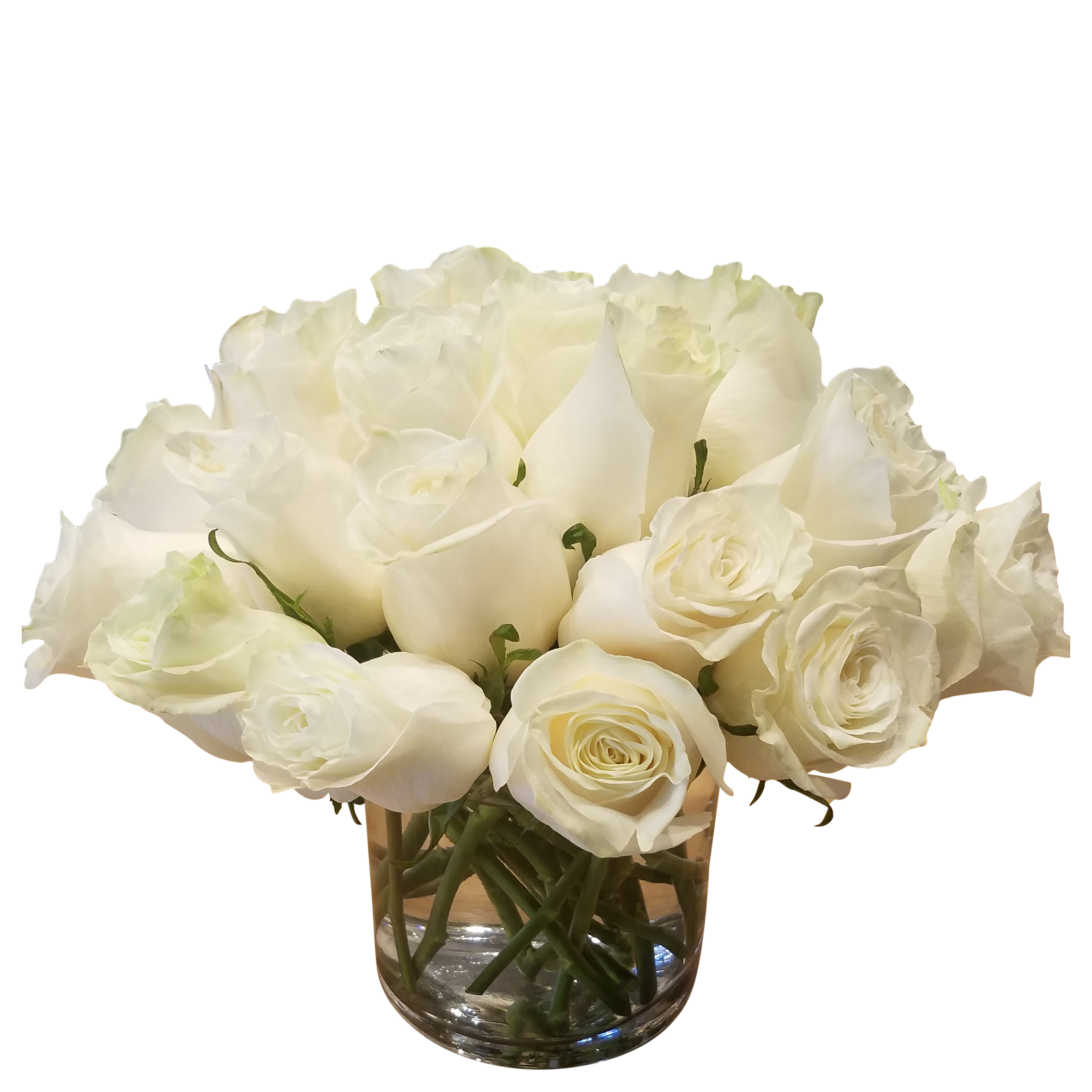 creamy white roses the flower shop