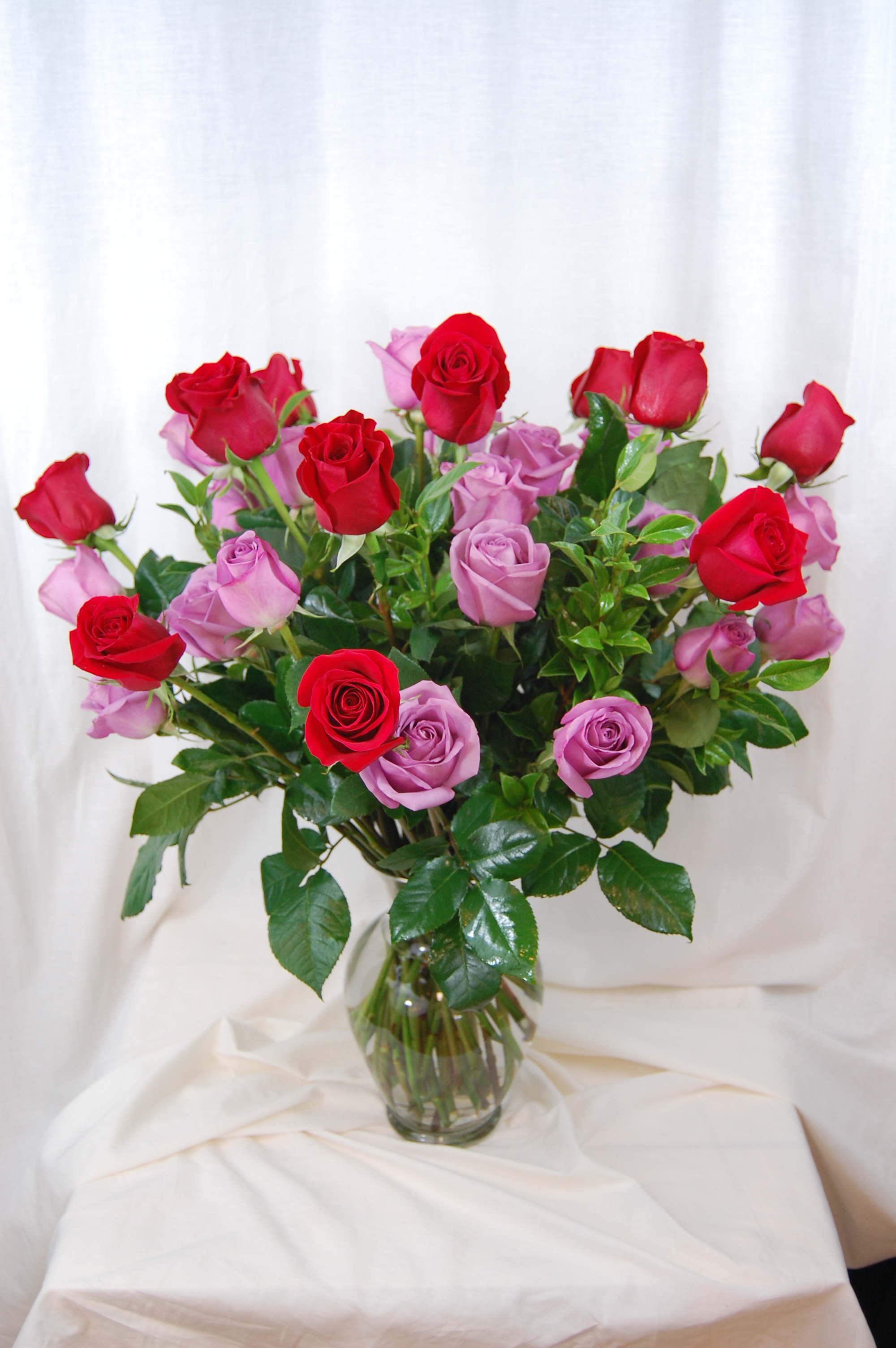 Three Dozen Lavender And Red Roses The Flower Shop
