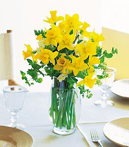 Image result for daffodils in vase